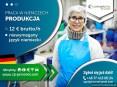Pracownik produkcji (k/m) bez znajomości języka - nawet do 12,50 €